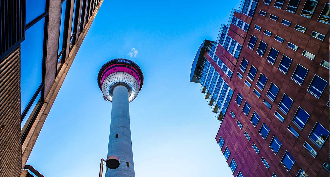 Immigration Consultant in Calgary